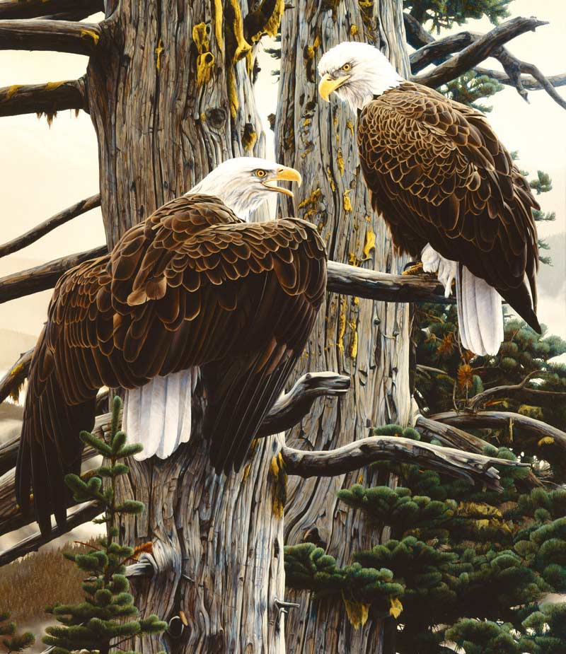 Nesting Call Eagles Jigsaw Puzzle