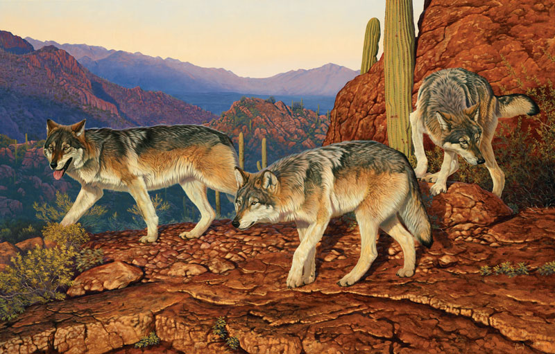 Desert Passage Wolves Jigsaw Puzzle