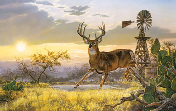 Texas Born Deer Jigsaw Puzzle