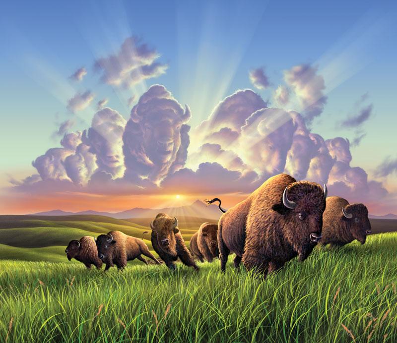 Bison Animals Hidden Images