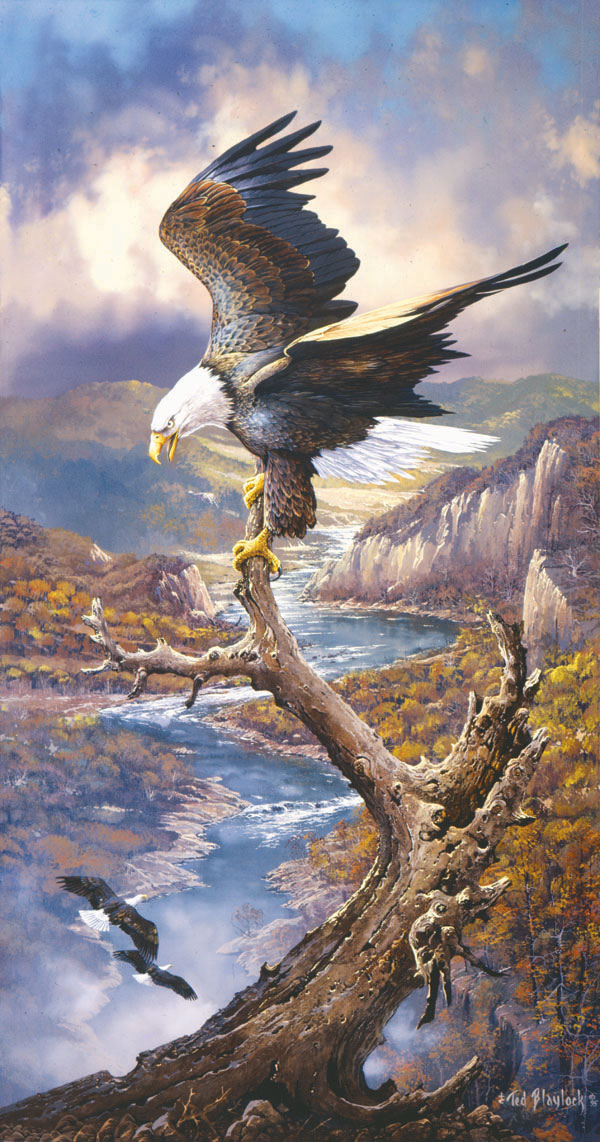 At Rest on the River Eagles Jigsaw Puzzle