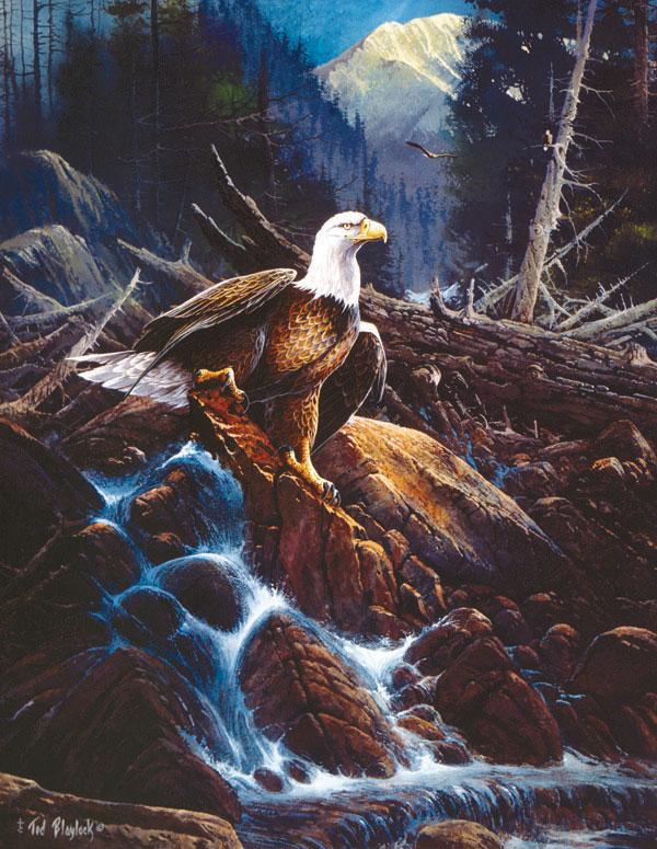 Salmon Watch Eagles Jigsaw Puzzle