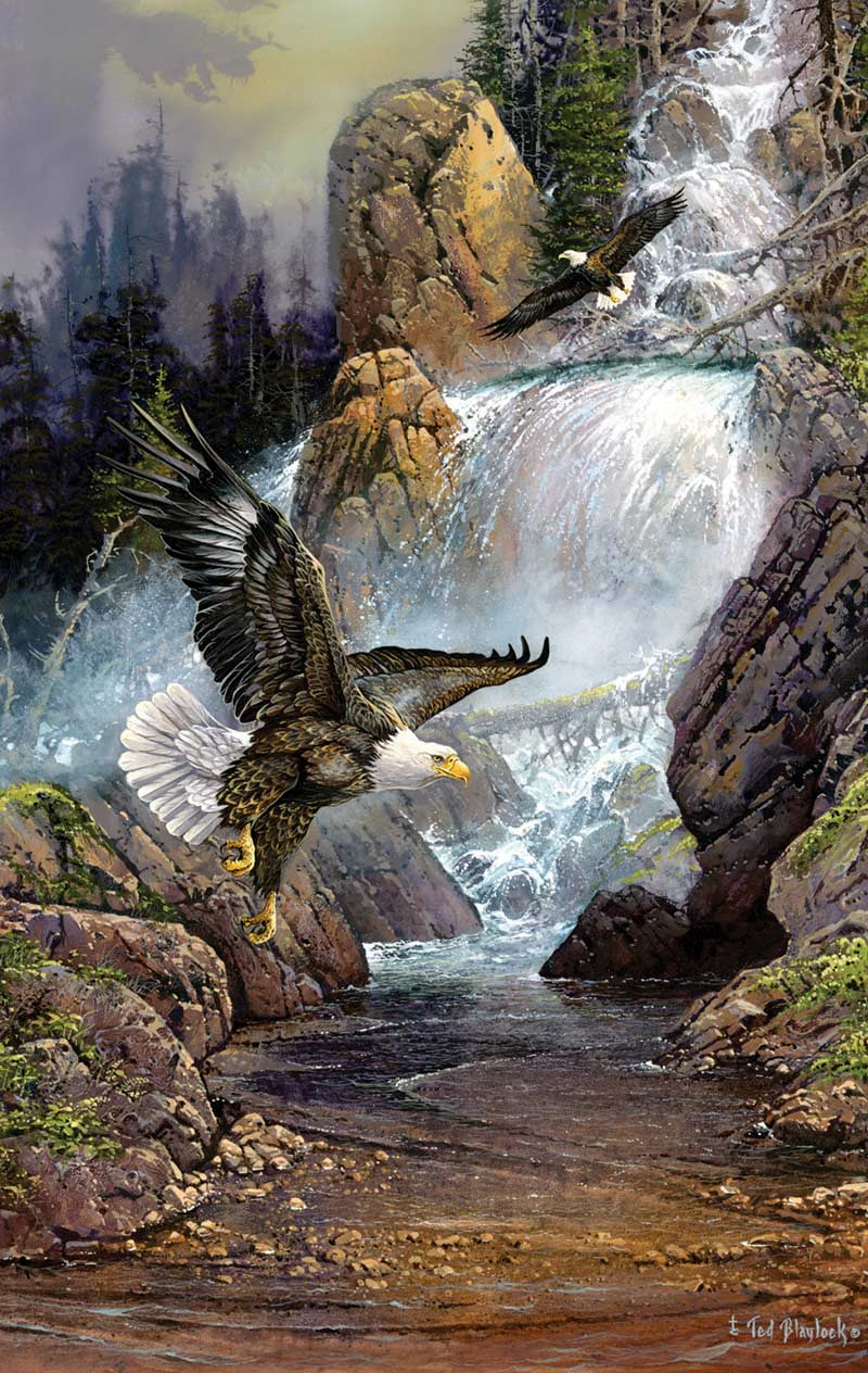 Cascade Eagles Eagles Jigsaw Puzzle