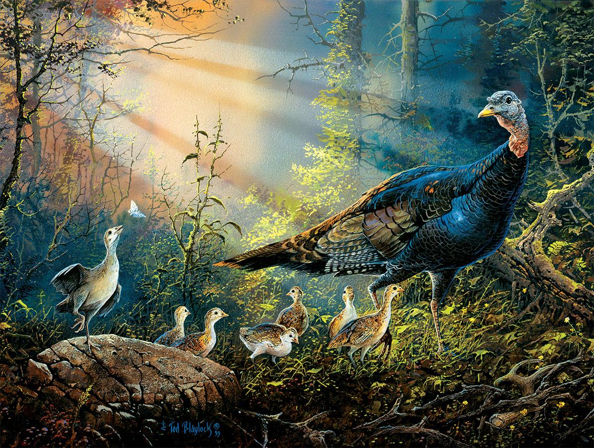 Turkey in the Sun Rays Birds Jigsaw Puzzle