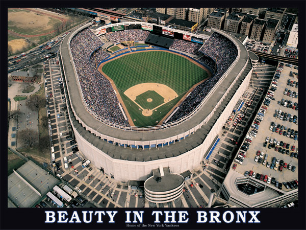 Beauty in the Bronx Jigsaw Puzzle