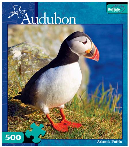 Atlantic Puffin Birds Jigsaw Puzzle