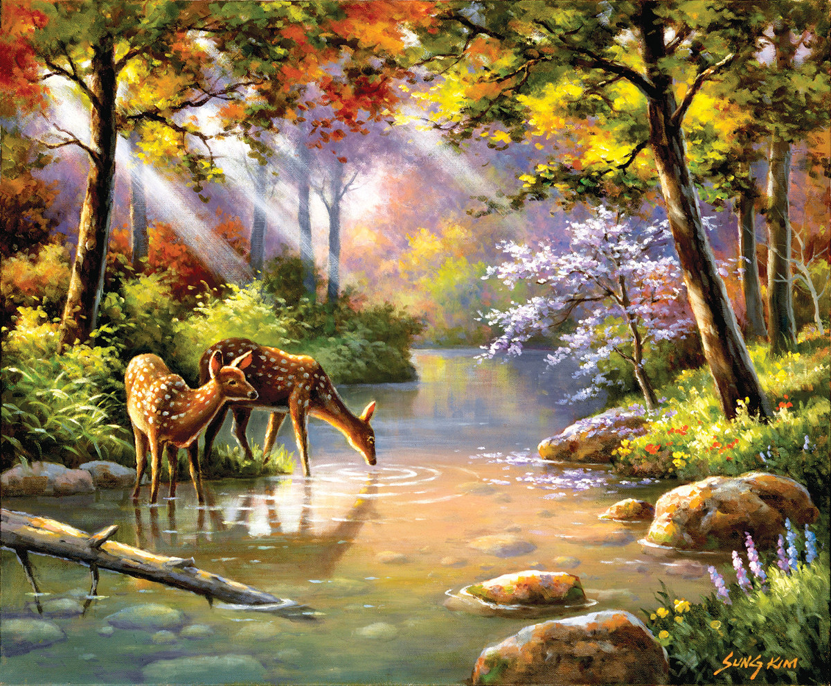 Doe Re Me Creek - Scratch and Dent Wildlife Jigsaw Puzzle