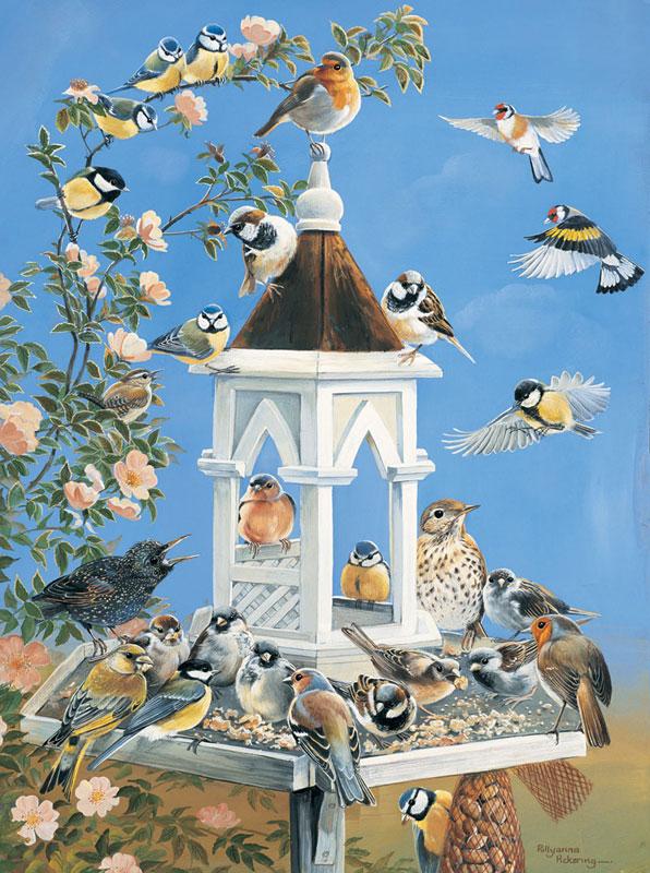 Bird Feed Birds Jigsaw Puzzle