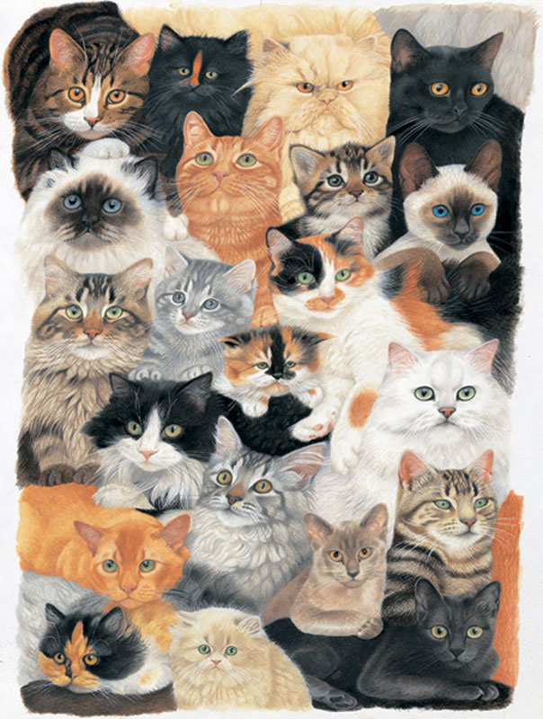 Cat Collage Jigsaw Puzzle Puzzlewarehouse Com