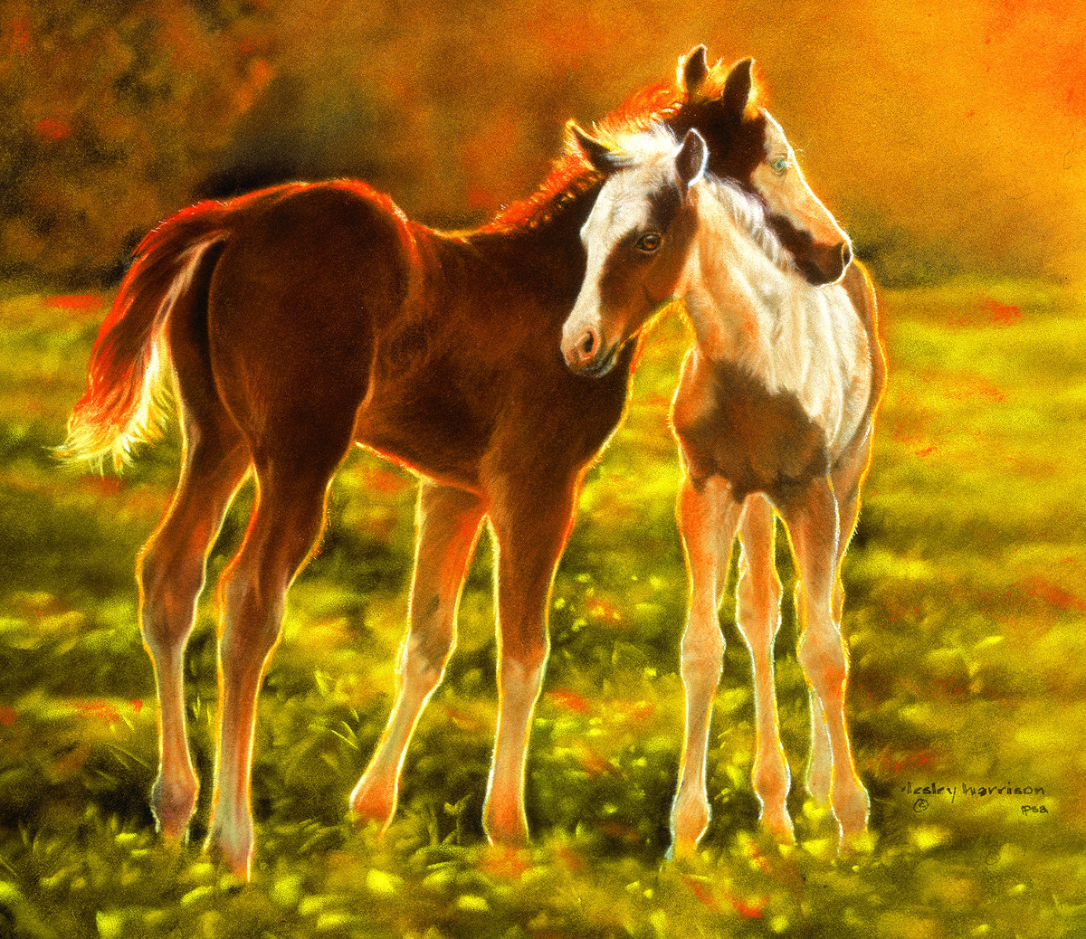 Backlit Foals Countryside Jigsaw Puzzle