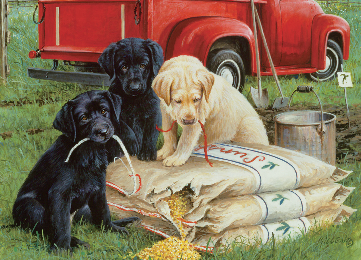 Just Dogs Farm Jigsaw Puzzle