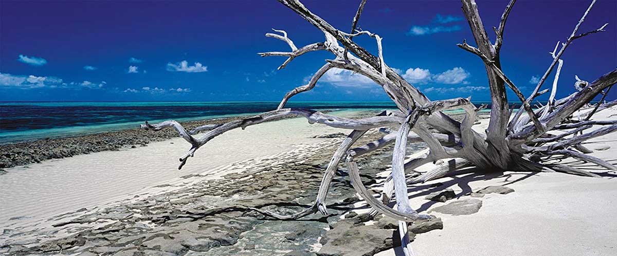 Green Island, Queensland Australia Beach Jigsaw Puzzle