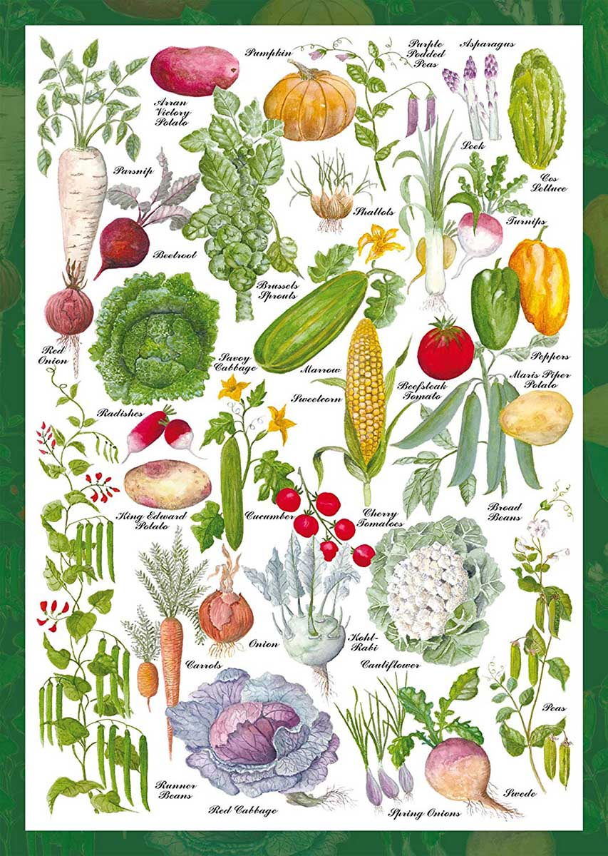Vegetable Garden Food and Drink Jigsaw Puzzle