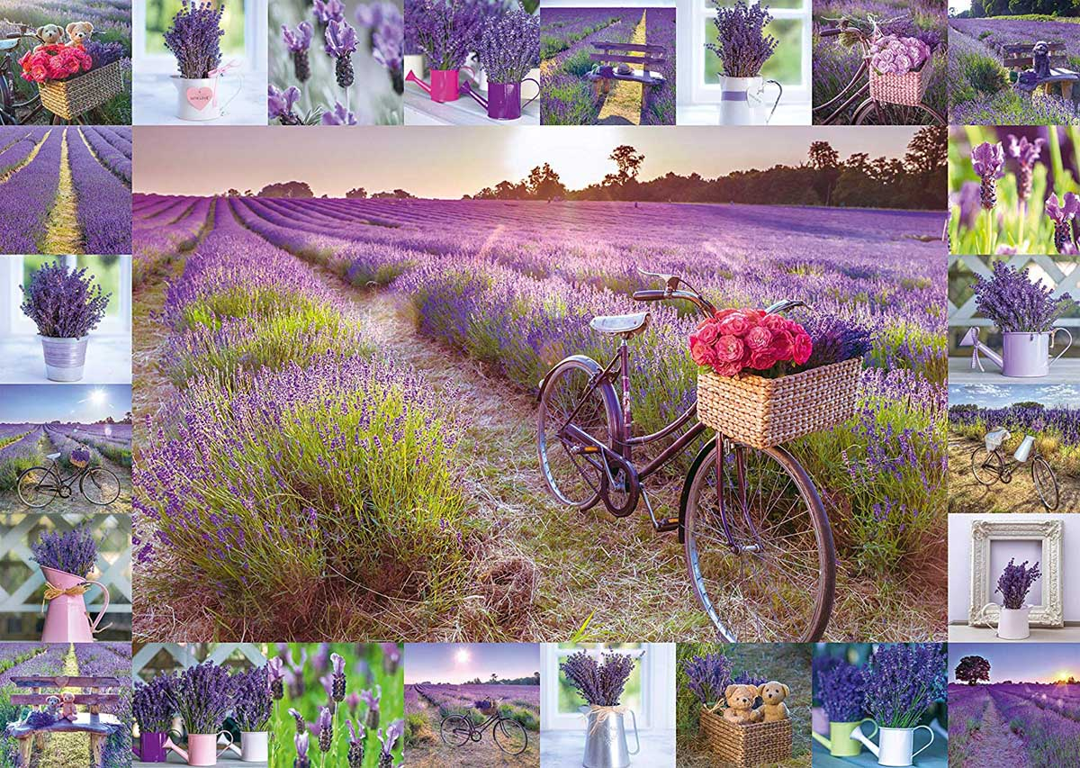 The Scent of Lavender Flowers Jigsaw Puzzle