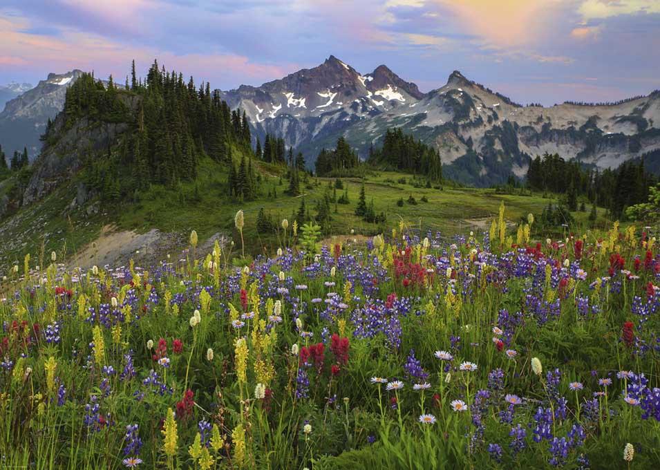 Tatoosh Mountains Mountains Jigsaw Puzzle