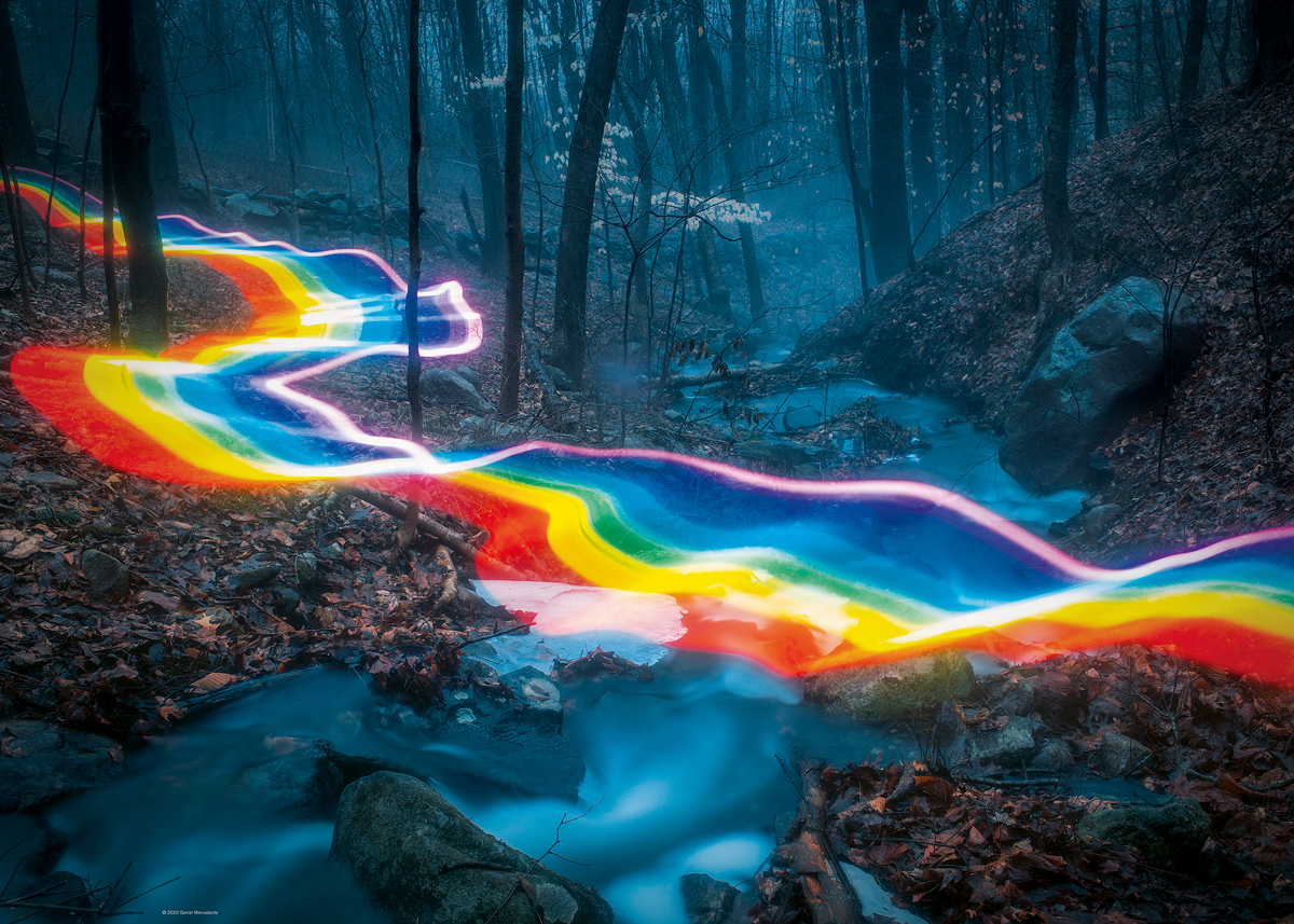 Rainbow Forests Forest Jigsaw Puzzle