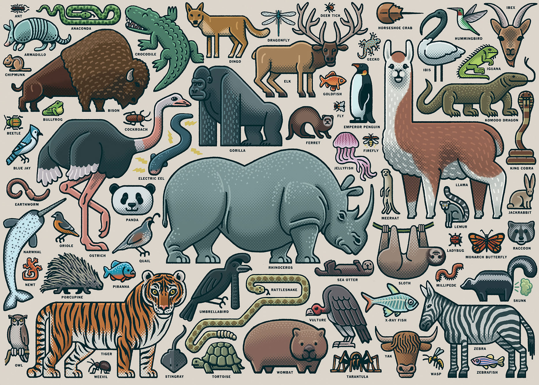 You Wild Animal Animals Jigsaw Puzzle