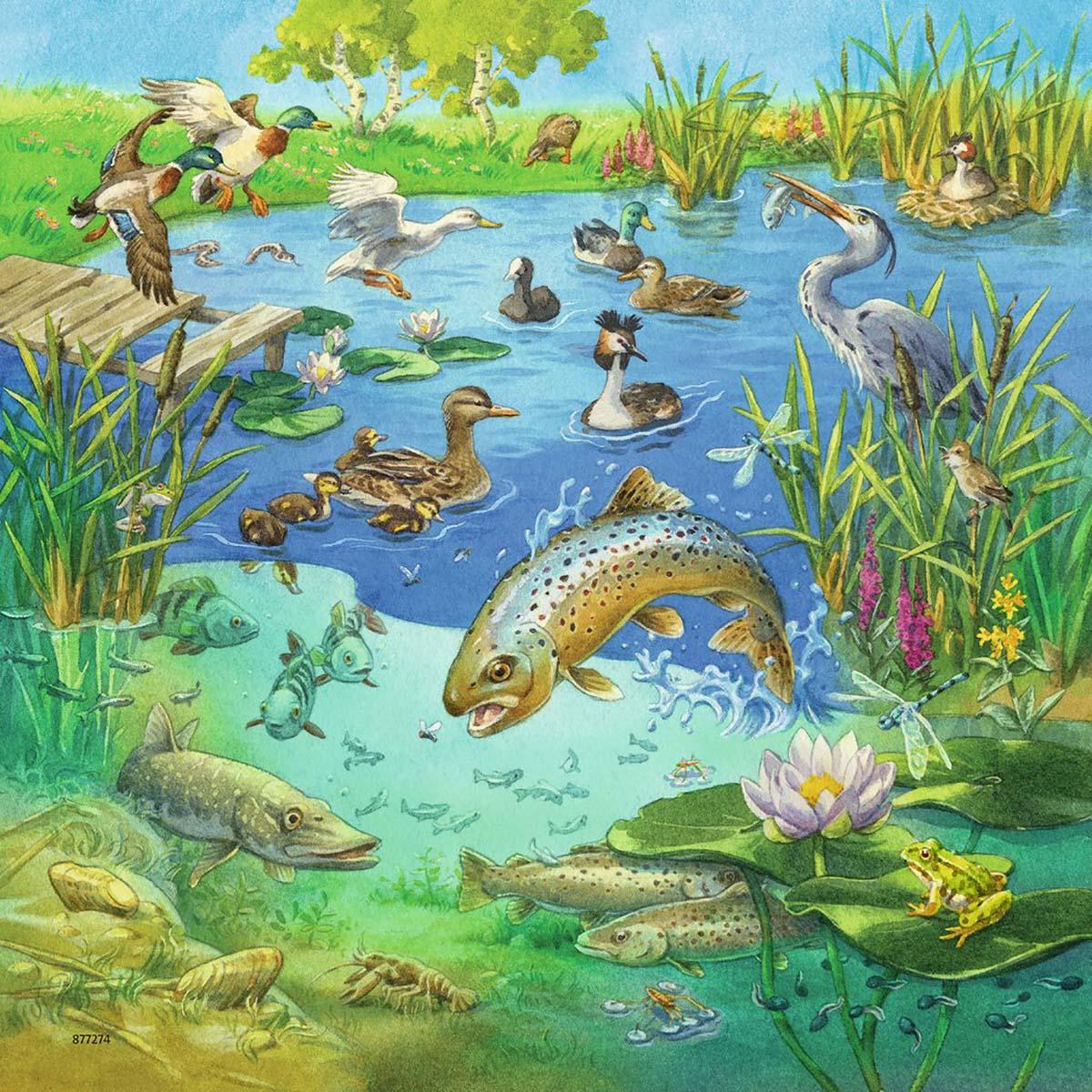 Animals in their Habitats Animals Jigsaw Puzzle