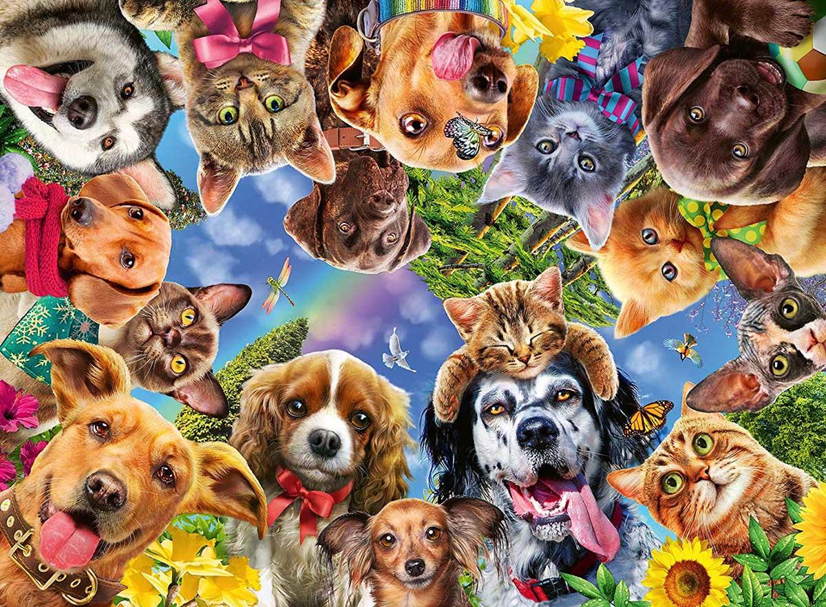 Animal Selfie Cats Jigsaw Puzzle