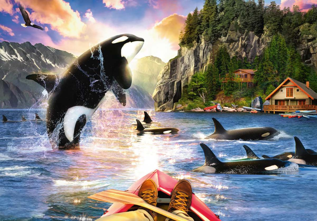 Close Encounters Dolphins Jigsaw Puzzle