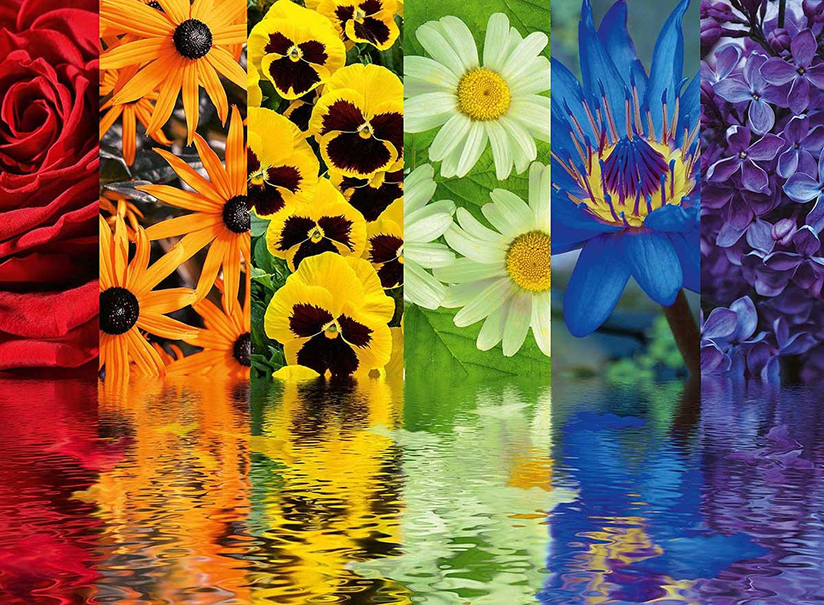 Floral Reflections Flowers Jigsaw Puzzle