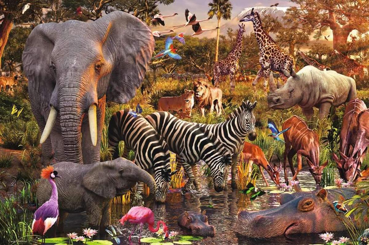 African Animal World Jungle Animals Jigsaw Puzzle