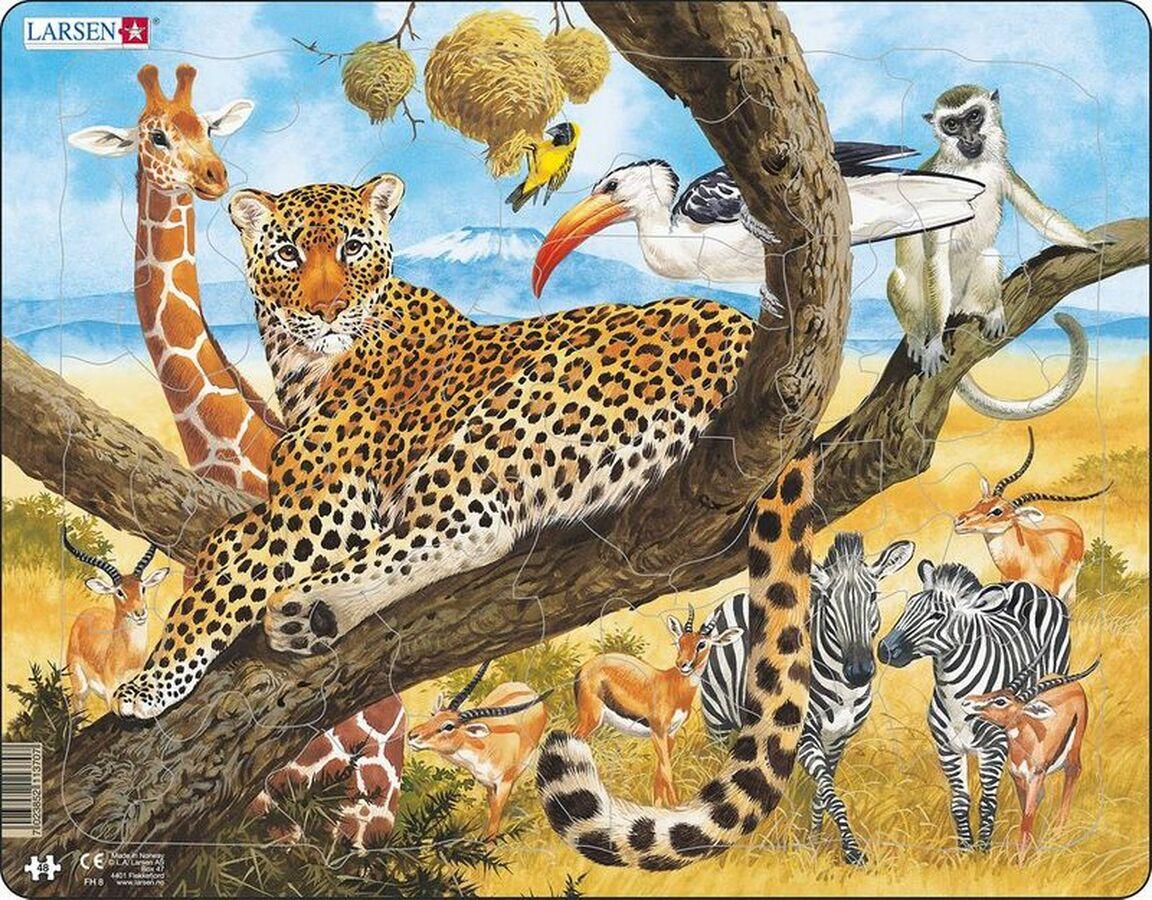 Leopard Cats Children's Puzzles