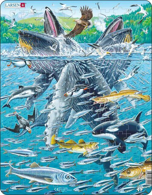Humpback Whales Fish Children's Puzzles