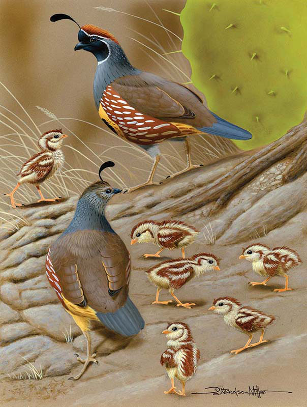 Parenting Birds Jigsaw Puzzle