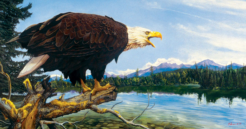 Eagle Point Eagles Jigsaw Puzzle
