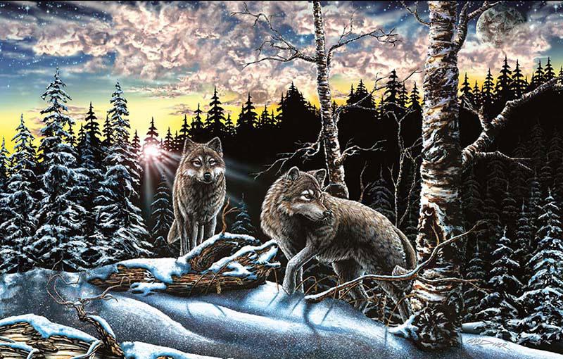 15 Wolves Forest Hidden Images