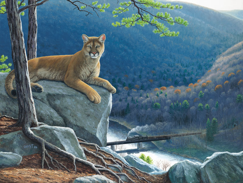 Mountain Lion Tracks Forest Jigsaw Puzzle
