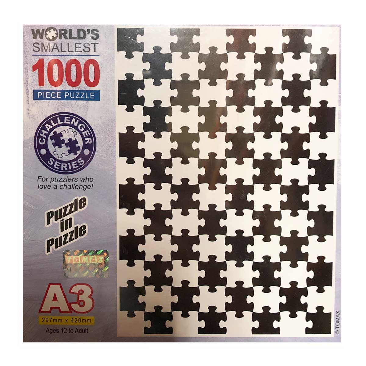 Puzzle In Puzzle (Mini) Abstract Jigsaw Puzzle