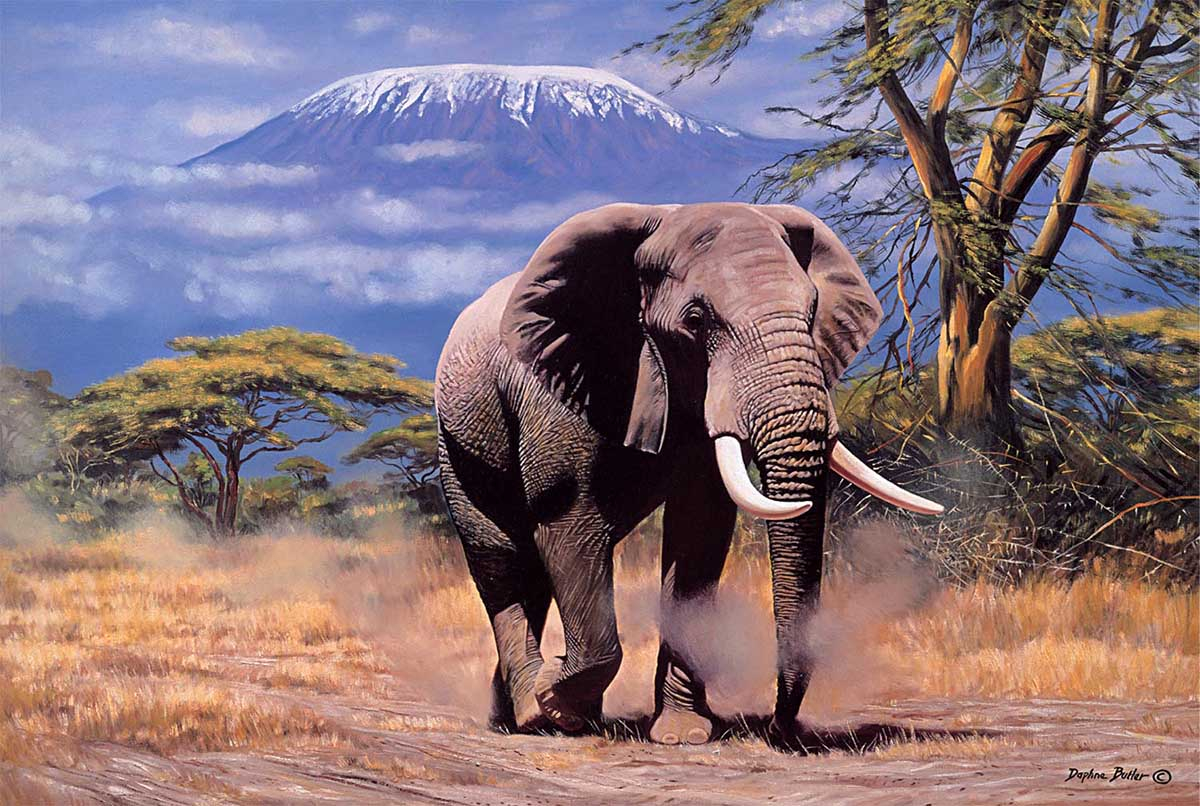 Elephant in Amboseli Jungle Animals Jigsaw Puzzle