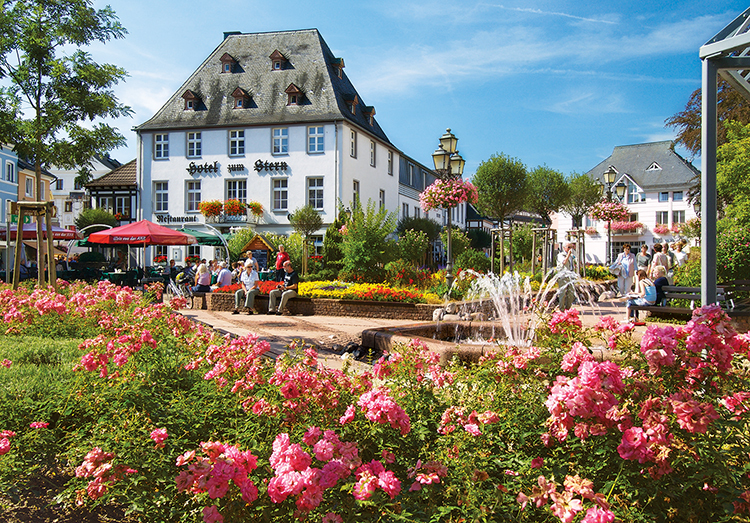 Market Square, Bad Neuenahr-Ahrweiler, Germany - Scratch and Dent Flowers Jigsaw Puzzle