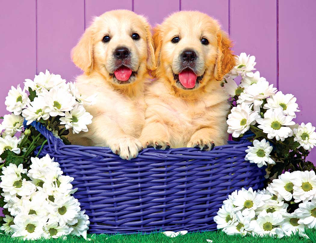 Puppy Basket Dogs Jigsaw Puzzle