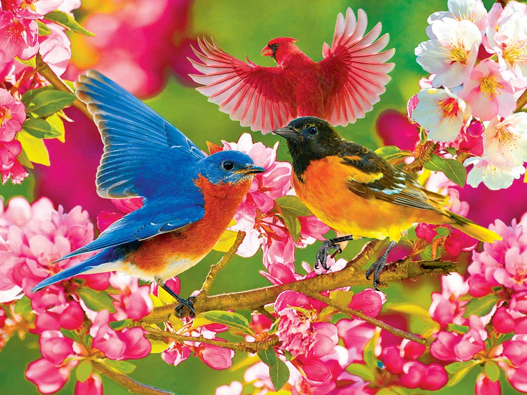 Colorful Songbirds and Cherry Blossoms Birds Jigsaw Puzzle