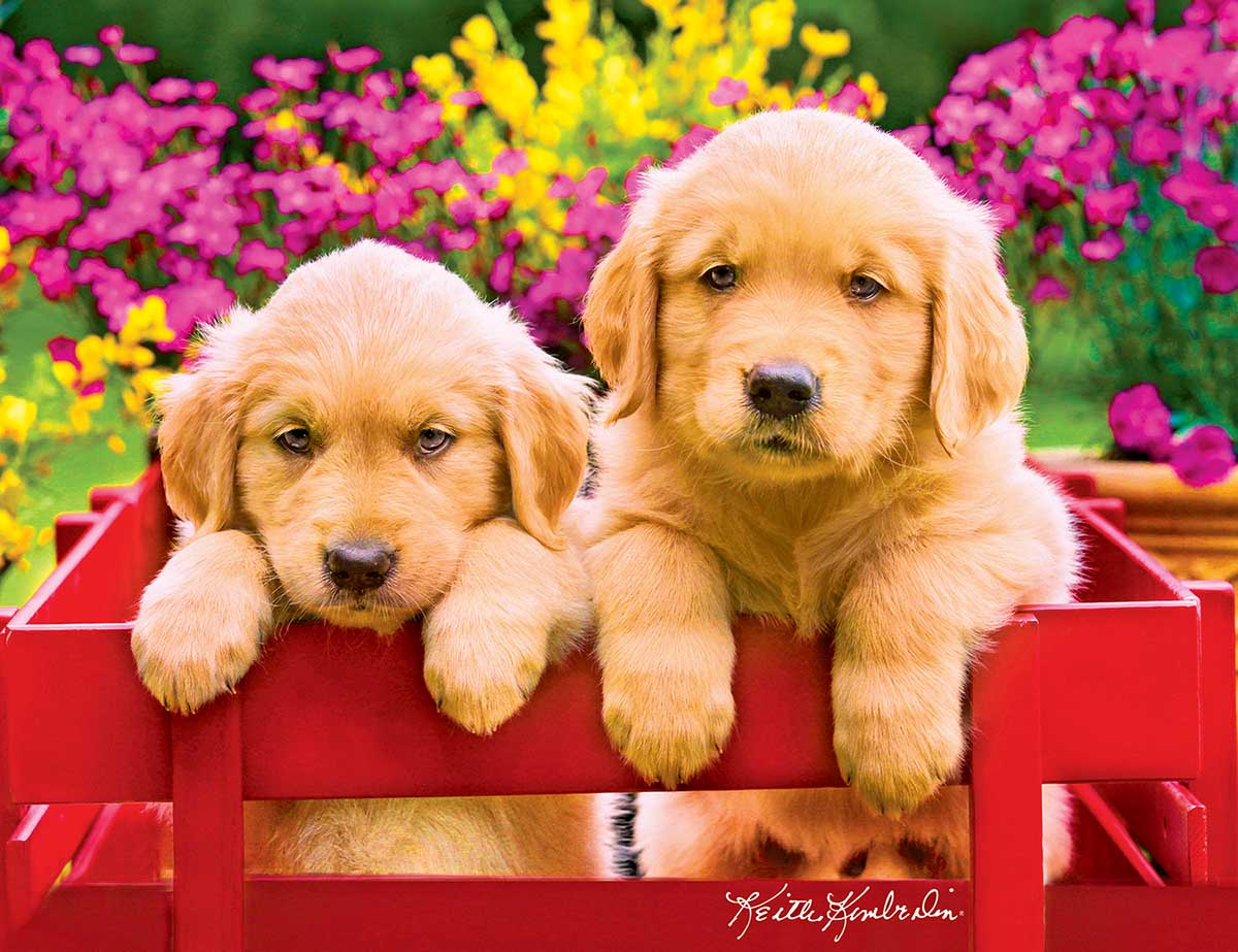 Golden Retreiver Puppies In A Red Wagon Dogs Jigsaw Puzzle