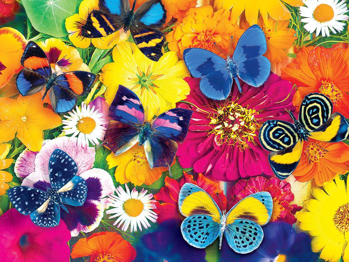 Butterfly Meetup Butterflies and Insects Jigsaw Puzzle