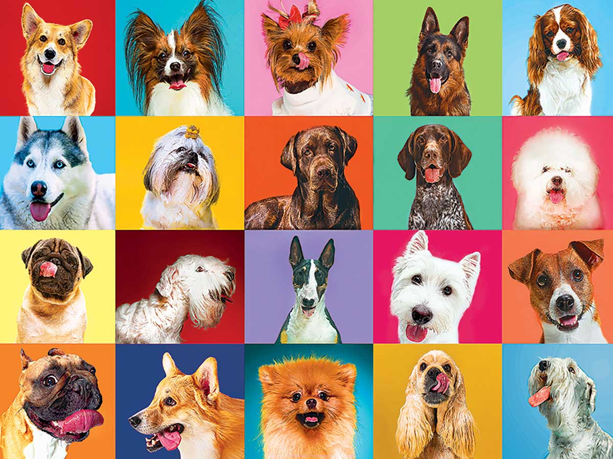 20 Happy Dogs Dogs Jigsaw Puzzle