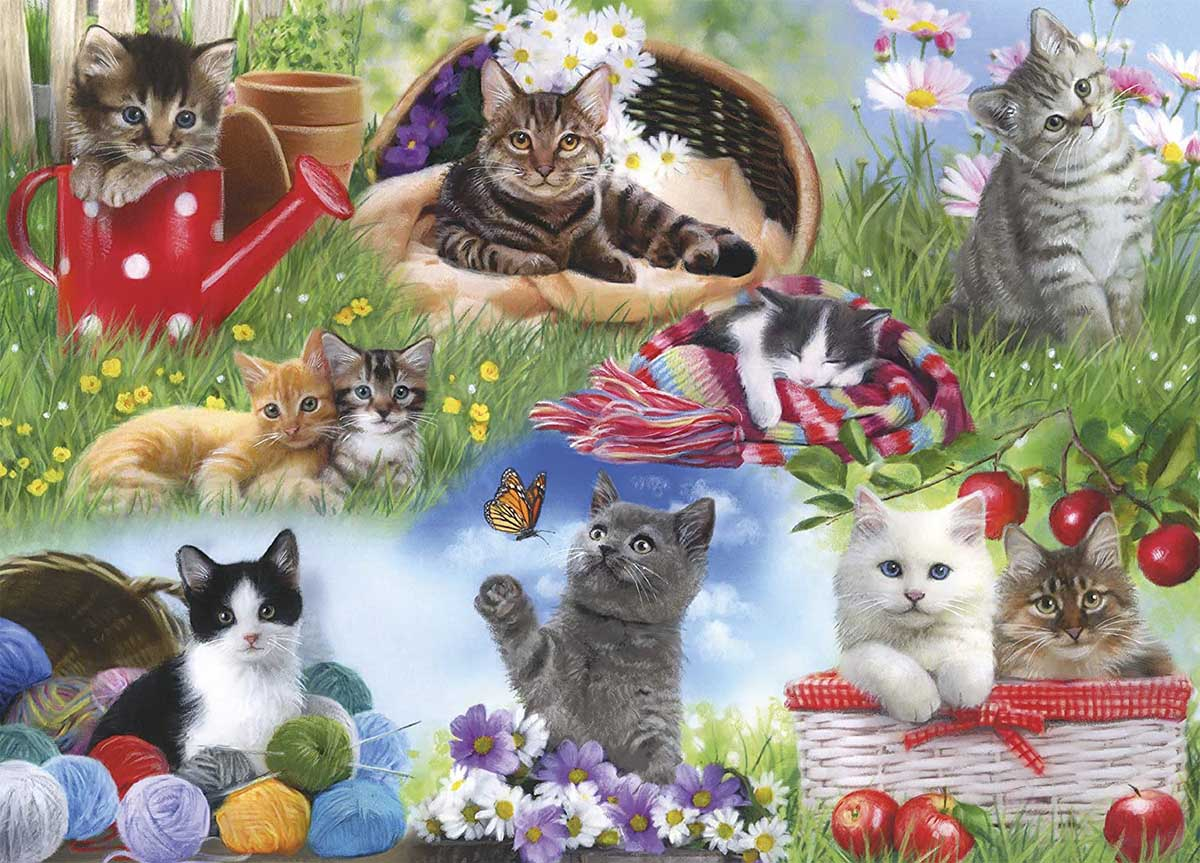 Cats Cats Jigsaw Puzzle