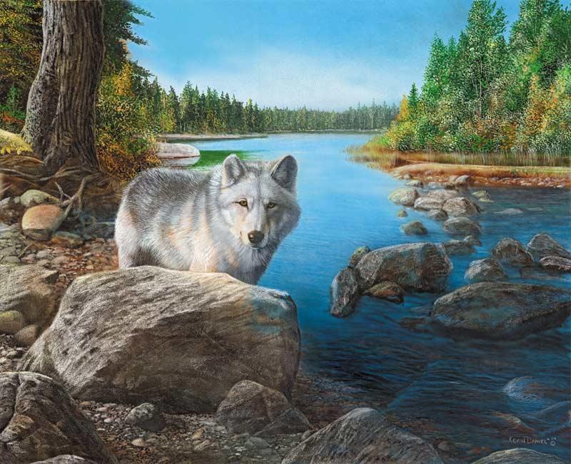 Riverside Wolf 750 Piece Jigsaw Puzzle
