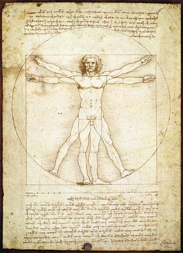Vitruvius Man Renaissance Jigsaw Puzzle