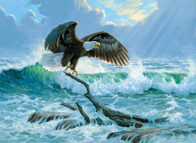 Claiming the Sea Eagles Jigsaw Puzzle