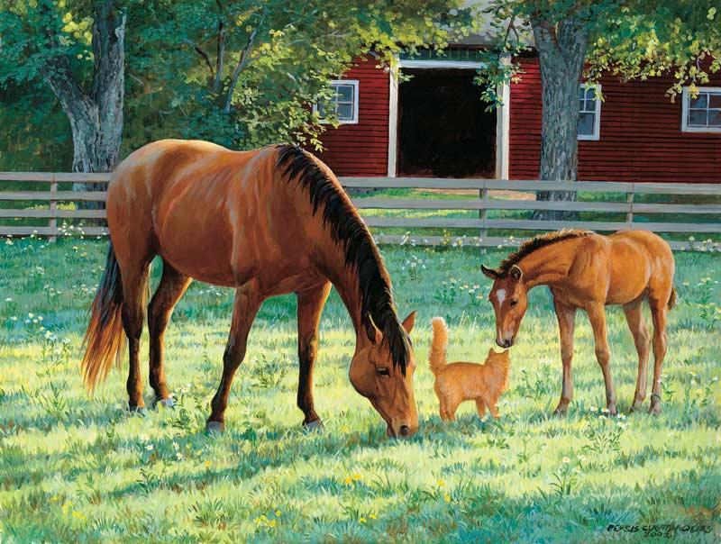 Sunshine & Daisies Horses Jigsaw Puzzle