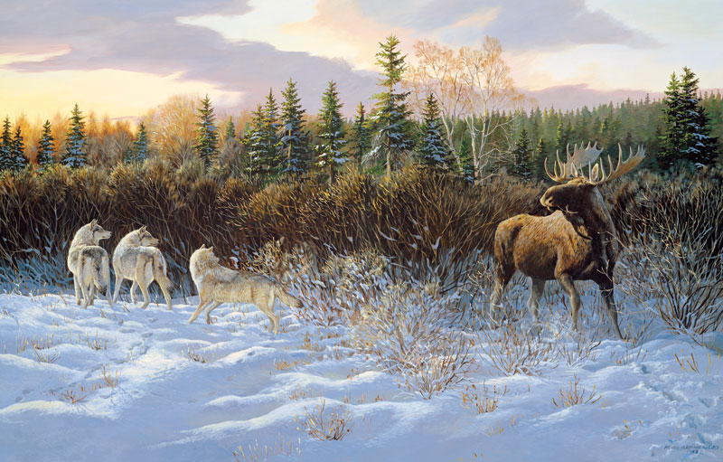 Second Thoughts Wildlife Jigsaw Puzzle