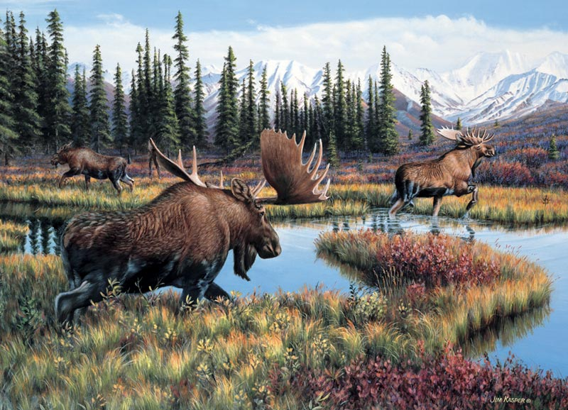 Moose Travels Outdoors Jigsaw Puzzle