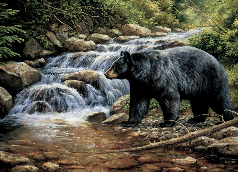 Shadow of the Forest Bears Jigsaw Puzzle