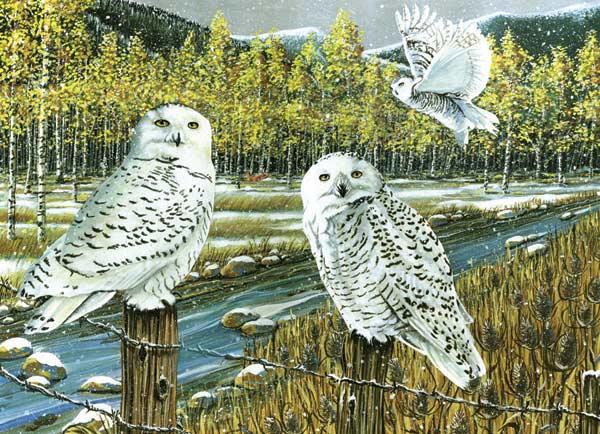 Snowy Owl Gathering Birds Jigsaw Puzzle