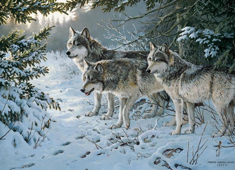 Wolf Trail Snow Jigsaw Puzzle